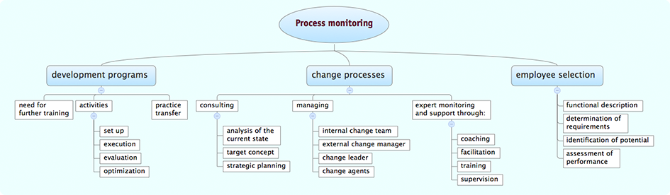 Consultancy and Process Monitoring and Support